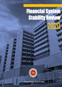 Financial System Stability Review 2020